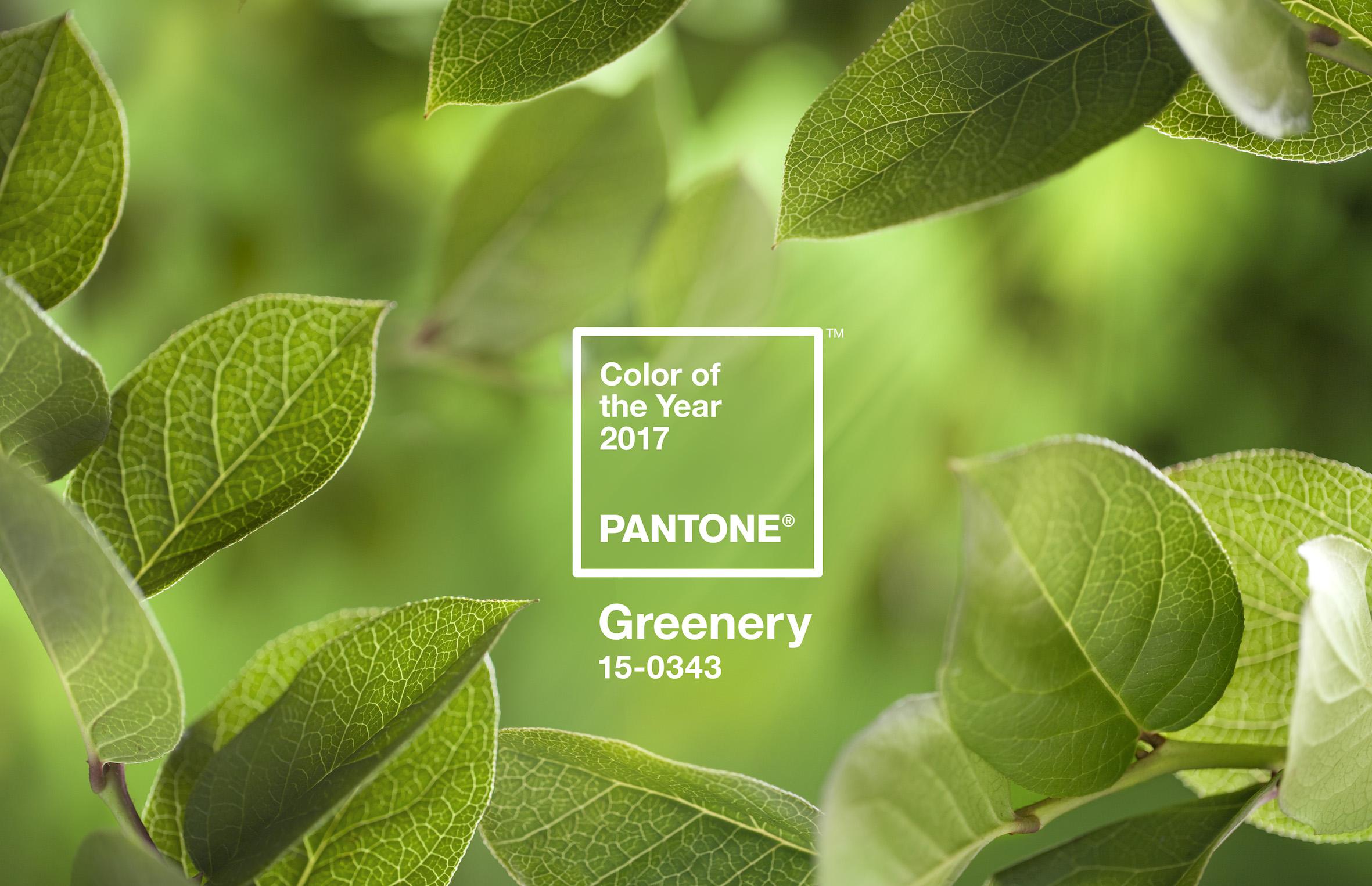 Pantone Color of the Year 2017: Greenery  pantone color of the year 2017 Pantone Color of the Year 2017: Greenery Pantone Color of the Year 2017 Greenery10