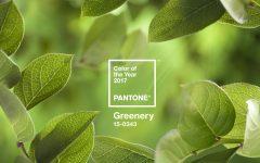 pantone color of the year 2017 Pantone Color of the Year 2017: Greenery Pantone Color of the Year 2017 Greenery10 240x150